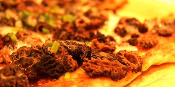 Korean BBQ Morel Pizza
