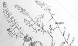 Artist Michael Landy for Sunspel – Frieze Art Fair 2012 T-Shirt