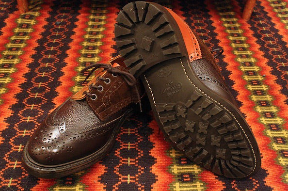nepenthes-brogue-03
