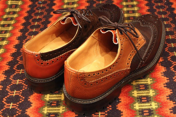nepenthes-brogue-04