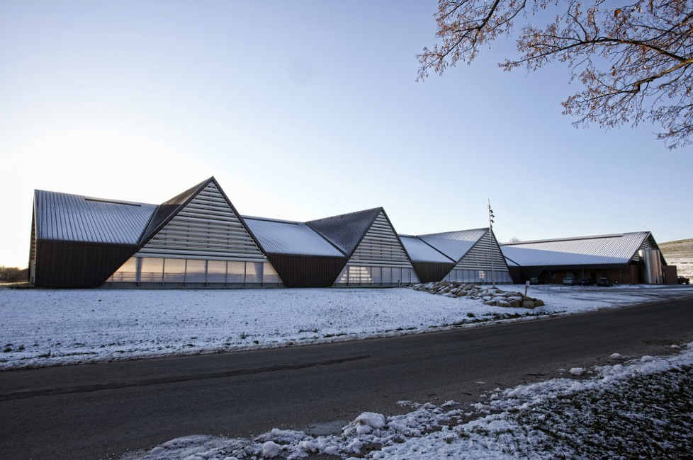 vejlskovgaard-stable-lumo-architects-11