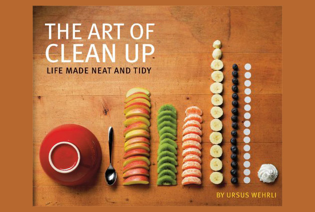 """The Art of Clean Up: Life Made Neat and Tidy"" Book 1"
