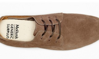 Mollusk Surf Shop for Generic Surplus Spring 2013 Footwear