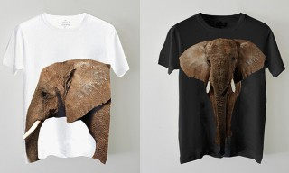 Edun and Ryan McGinley African Elephant T-Shirts for WildAid