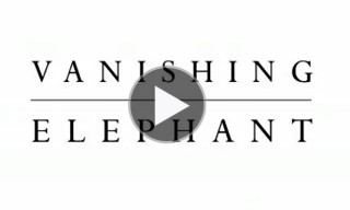 Vanishing Elephant Spring Summer 2013 Collection – Behind The Scenes