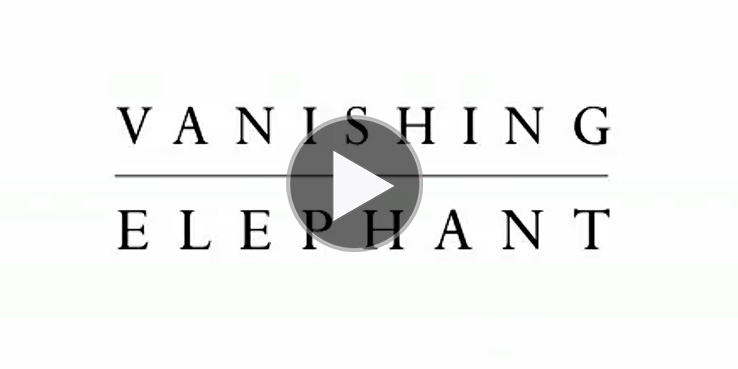 vanishing-elephant-fashion-week-00