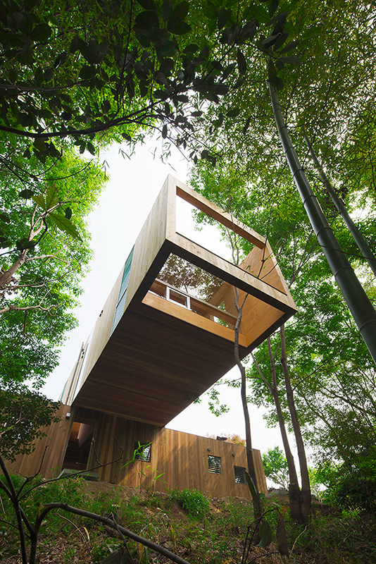 forest-house-uid-architects-08