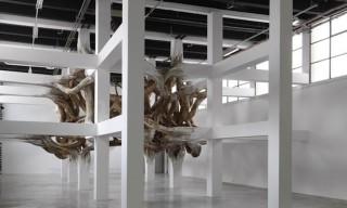 Henrique Oliveira 'Baitogogo' Installation at Palais de Tokyo
