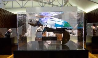 """Billie Achilleos for Louis Vuitton's """"Traveling Curiosities"""" Exhibition in Waikiki"""