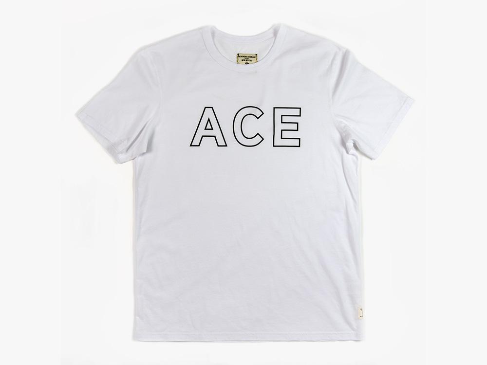 ace-2013-01