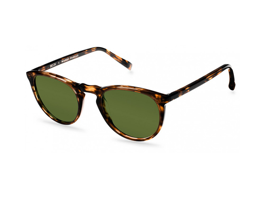 warby-beck-songreader-2013-02