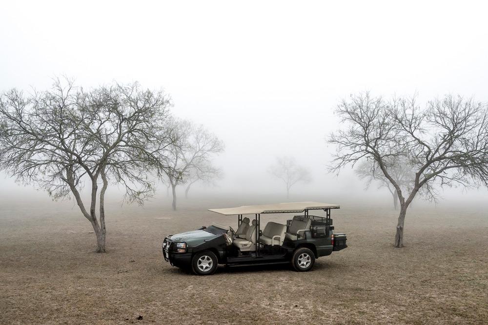 Texas-Quail-Rigs-02