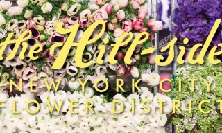 Nick Wooster and More for The Hill-Side Spring/Summer 2014
