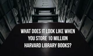 "Inside Harvard University's ""Cold Storage"" Archive Depository"