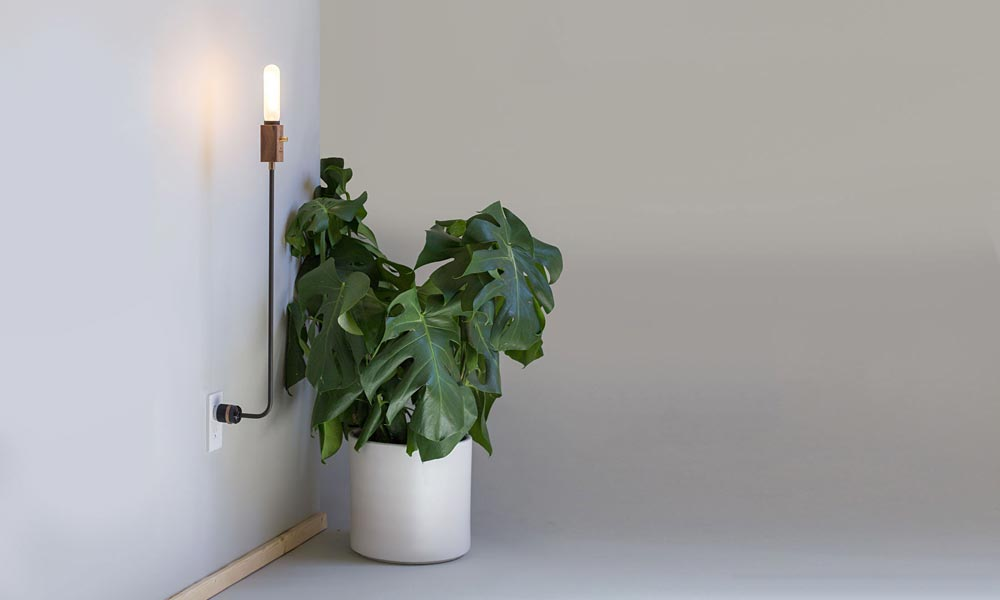 Wald-Plug-Light-feature