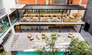 Inside the Contemporary Hotel Carlota in Mexico City